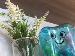 6月4日〜は歯と口の健康週間スタート!!